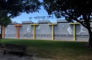 ציורי קיר חיצוניים בבית הספר בליך רמת גן